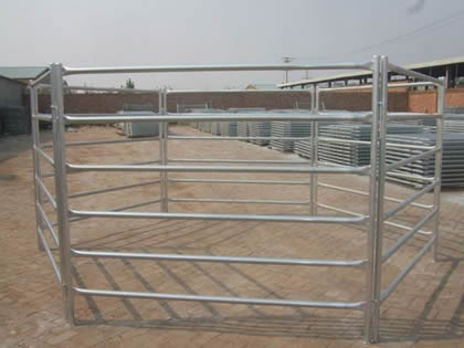 Several round rail pipe cattle corral fence is form a pen.