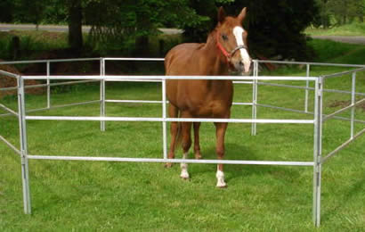 6 square pipe corral panels are co<em></em>nnected to enclose a horse on grassland
