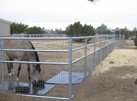 A foal is eating in the 4-rail welded wire corral